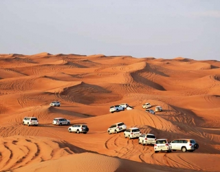 Elite escorts Dubai